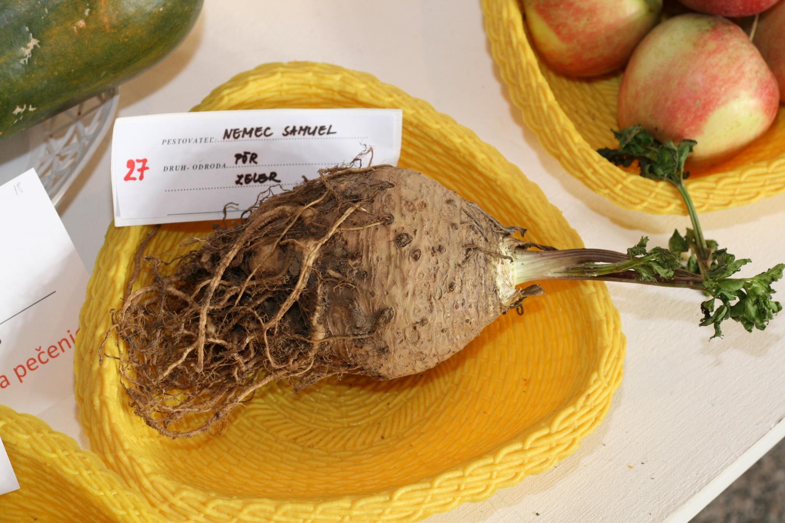 vystava-ovocia-zeleniny-zvolen-15
