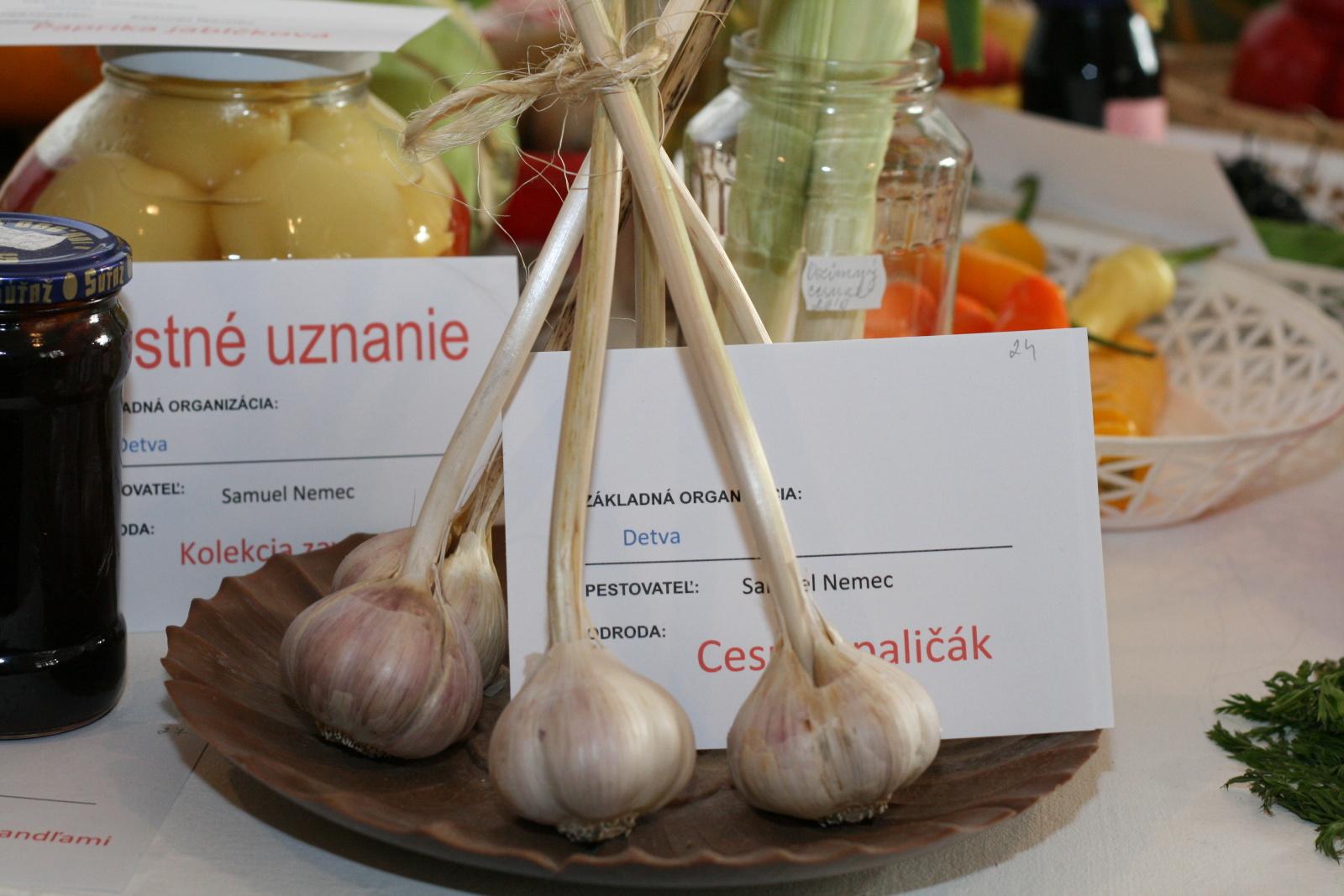 vystava-ovocia-zeleniny-zvolen-18