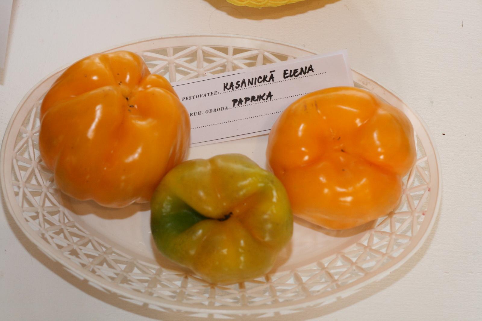 vystava-ovocia-zeleniny-zvolen-25