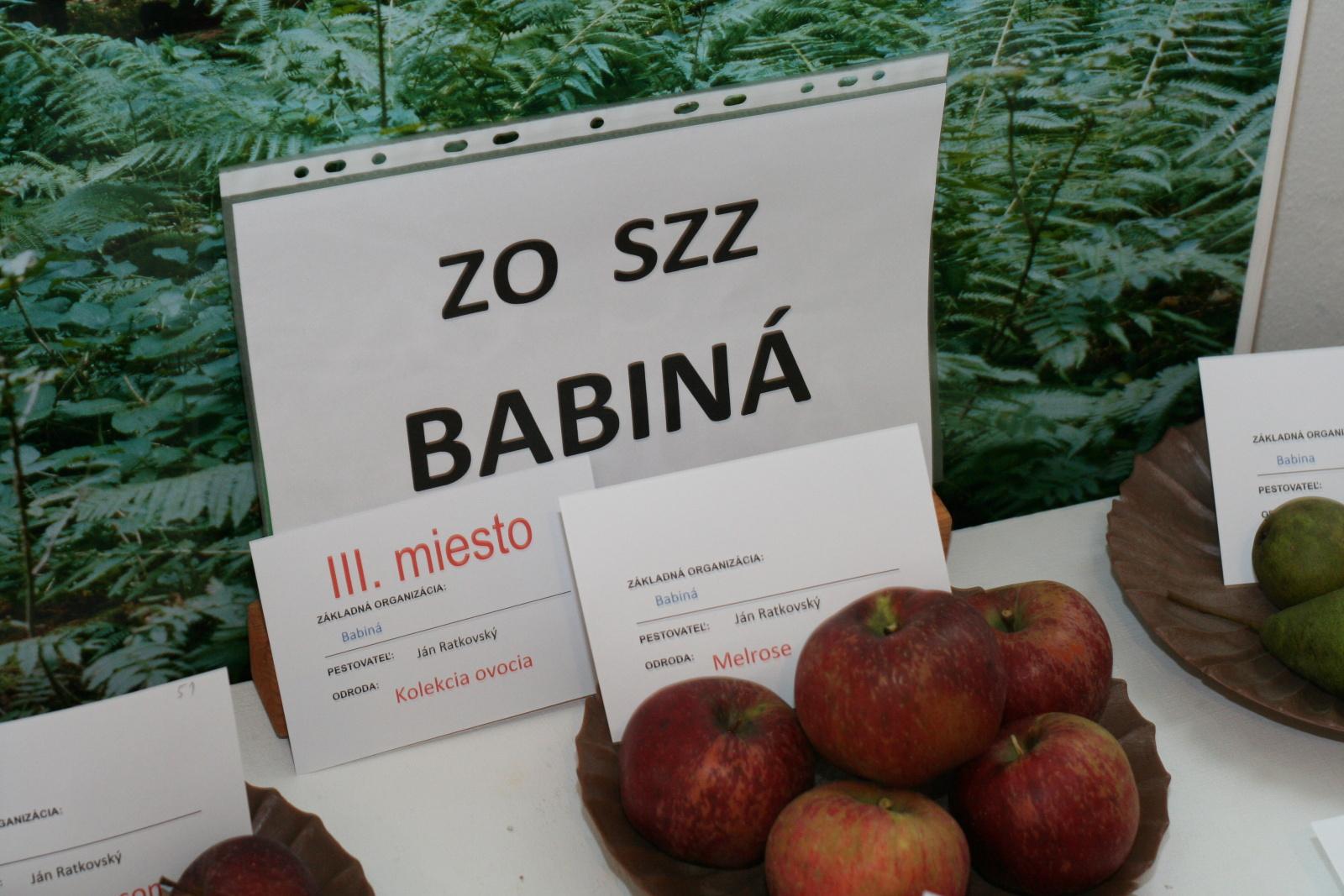 vystava-ovocia-zeleniny-zvolen-31