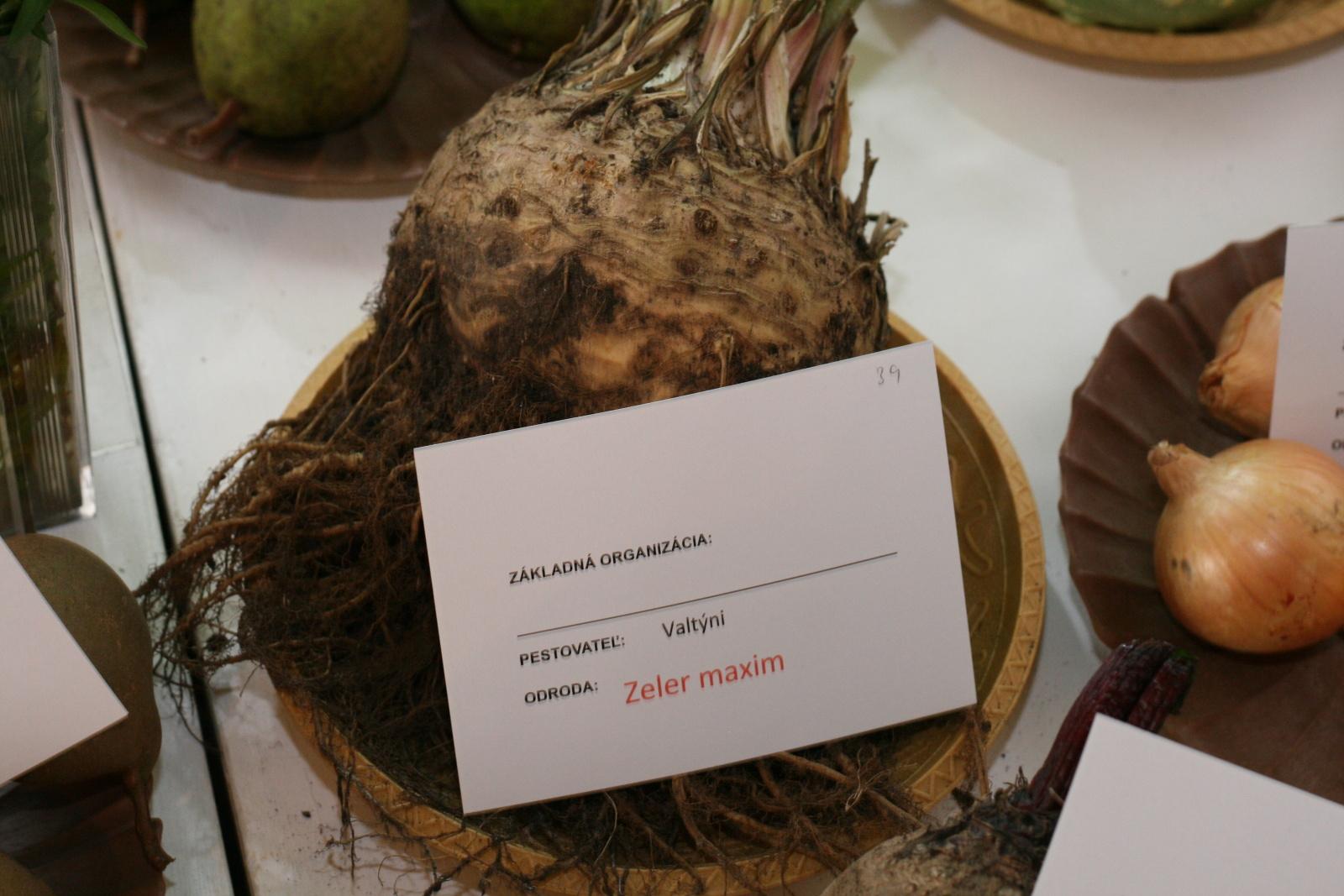 vystava-ovocia-zeleniny-zvolen-34