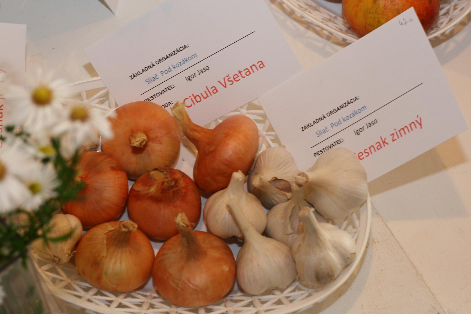 vystava-ovocia-zeleniny-zvolen-36