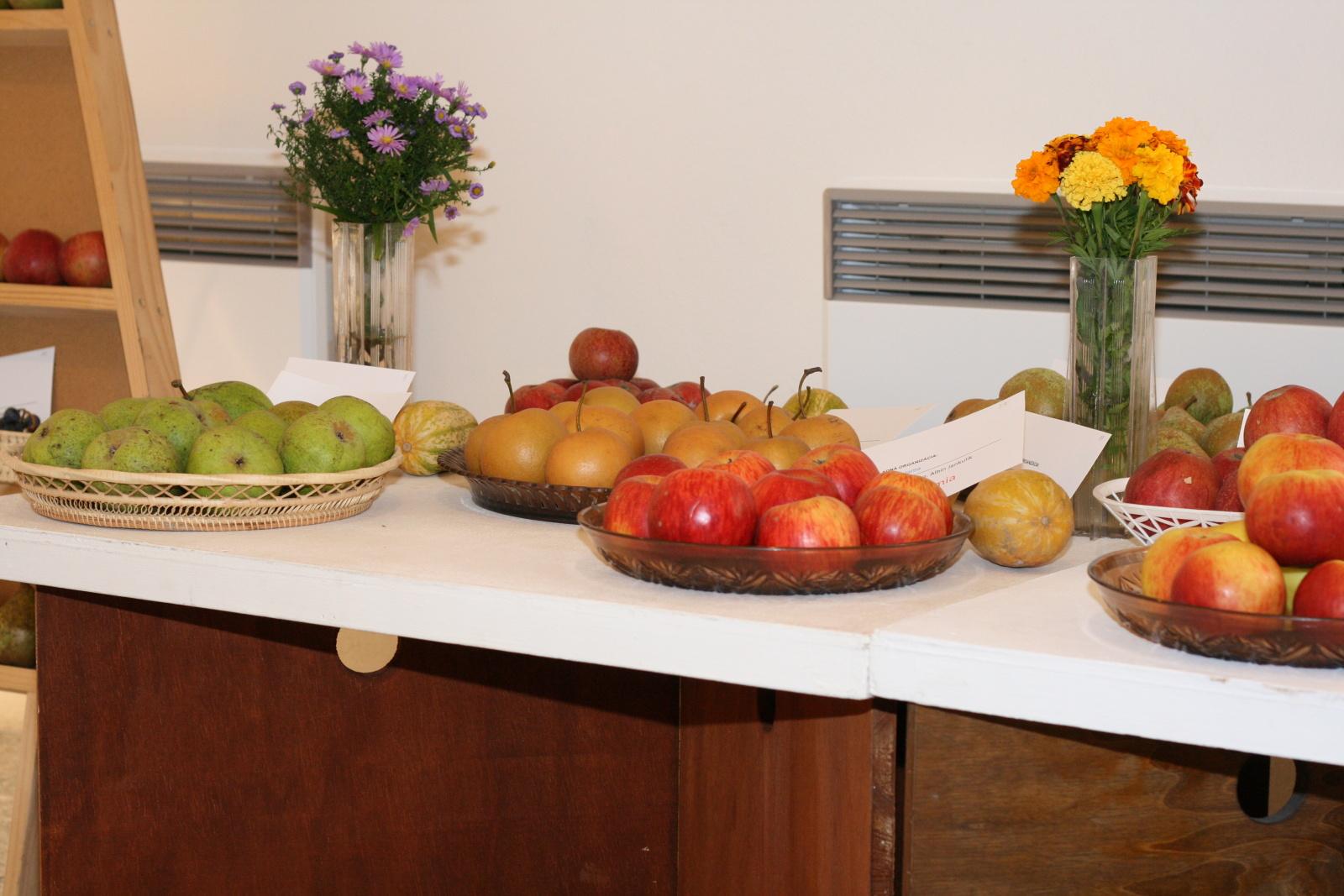 vystava-ovocia-zeleniny-zvolen-6