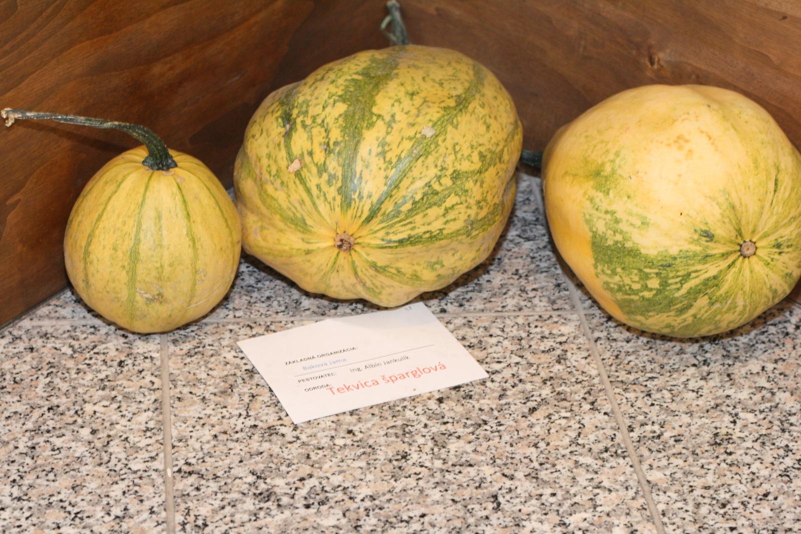 vystava-ovocia-zeleniny-zvolen-9