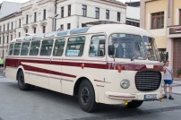 bus-fest-10
