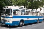 bus-fest-5