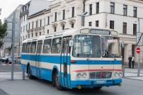 bus-fest-8