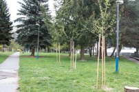 park-adolfa-priesola-1