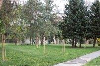park-adolfa-priesola-2