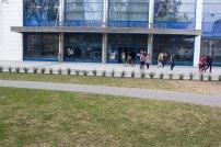vysadba-sturov-park-4