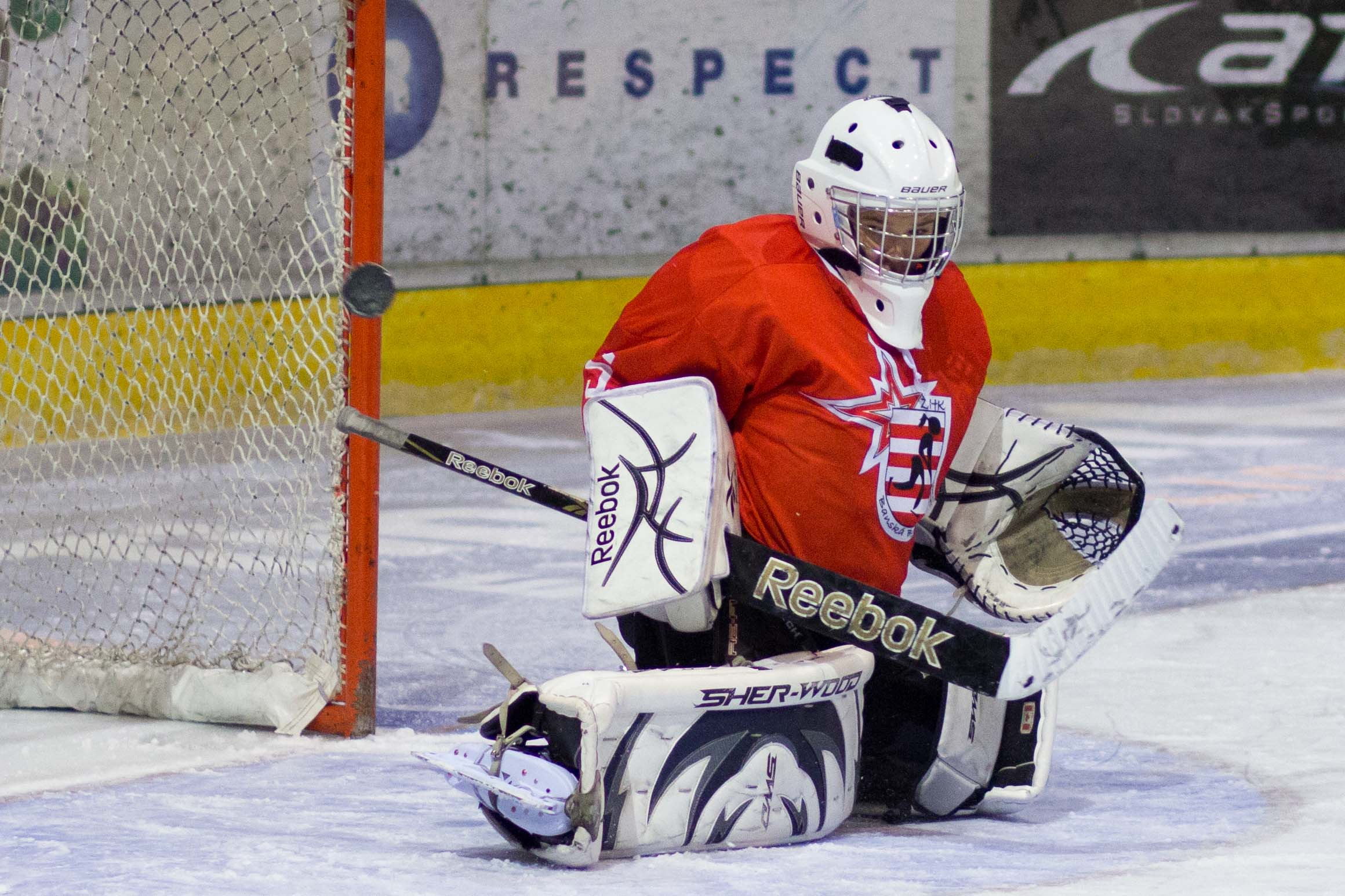 zhkm-zv-iskra-bb-2012-hokej-20