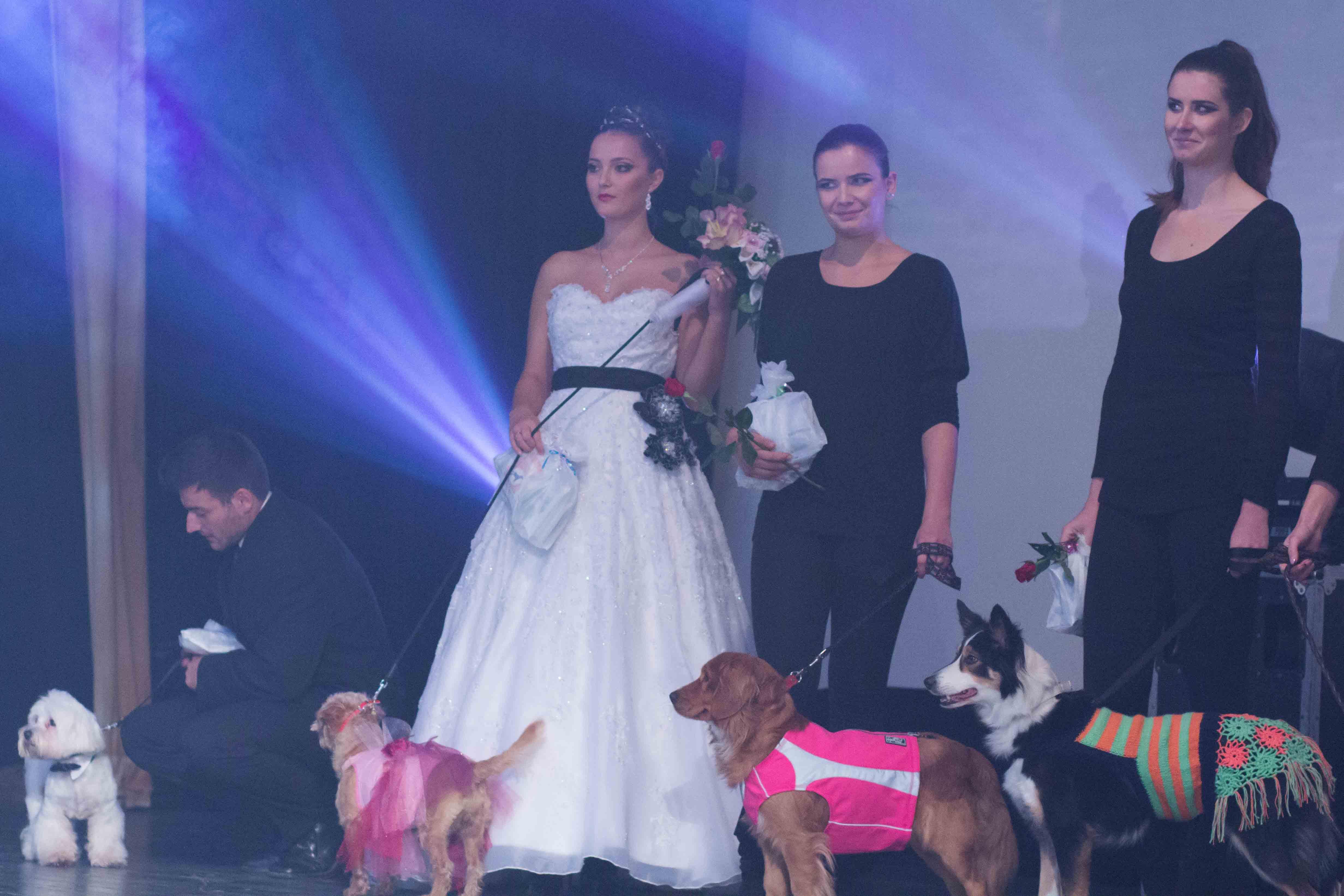 dog-fashion-show-sk-2012-zvolen-22