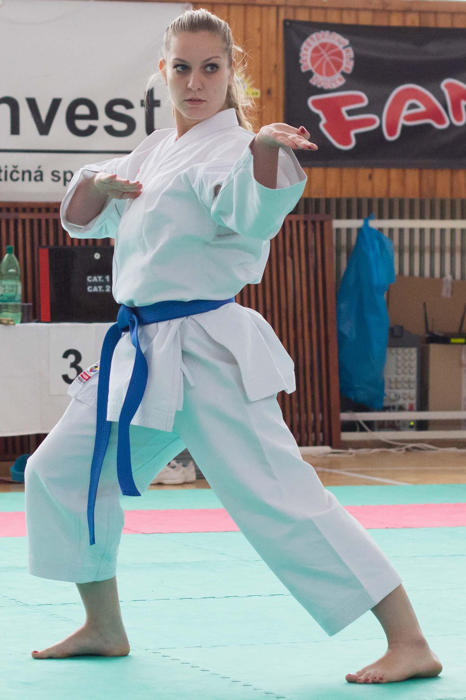23-karate-cup-zvolen-2013-kata-7
