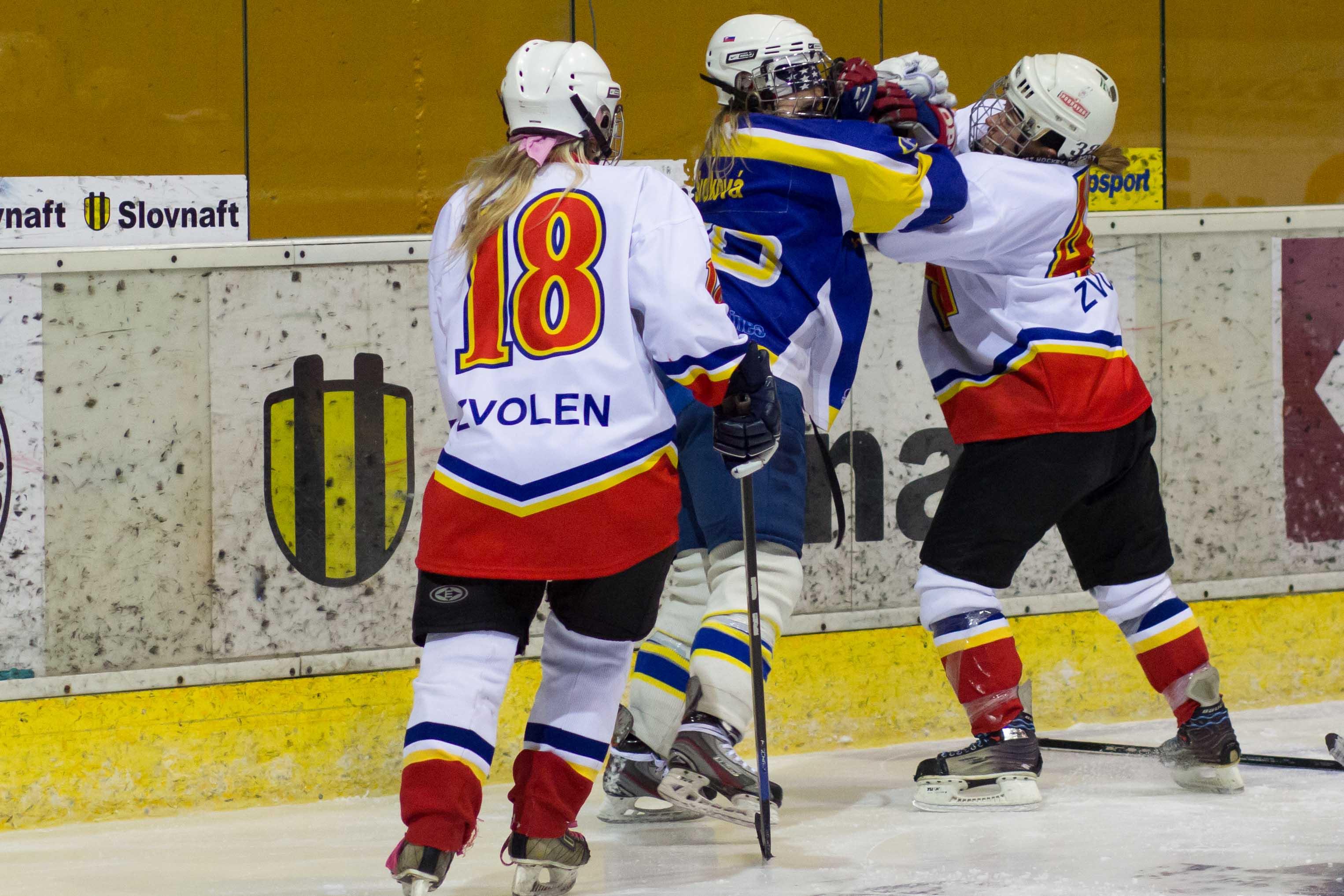 zhkm-zvolen-hc-spisska-n-ves-2013-hokej-13