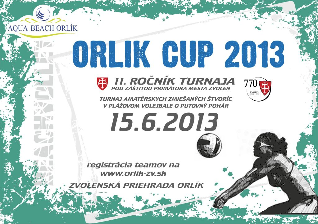 ORLIK CUP 2013