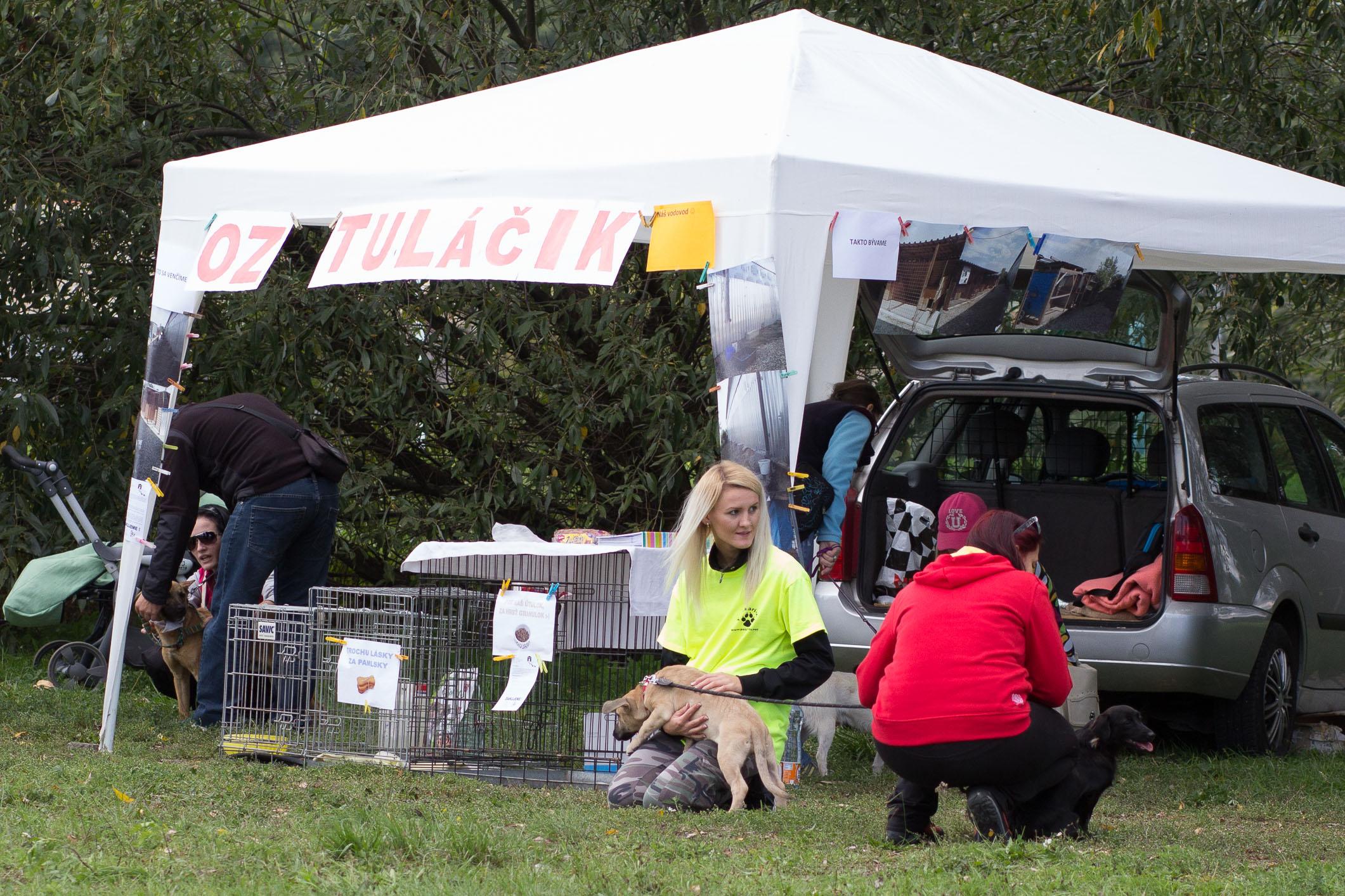 den-s-utulkacom-2013-zvolen-5