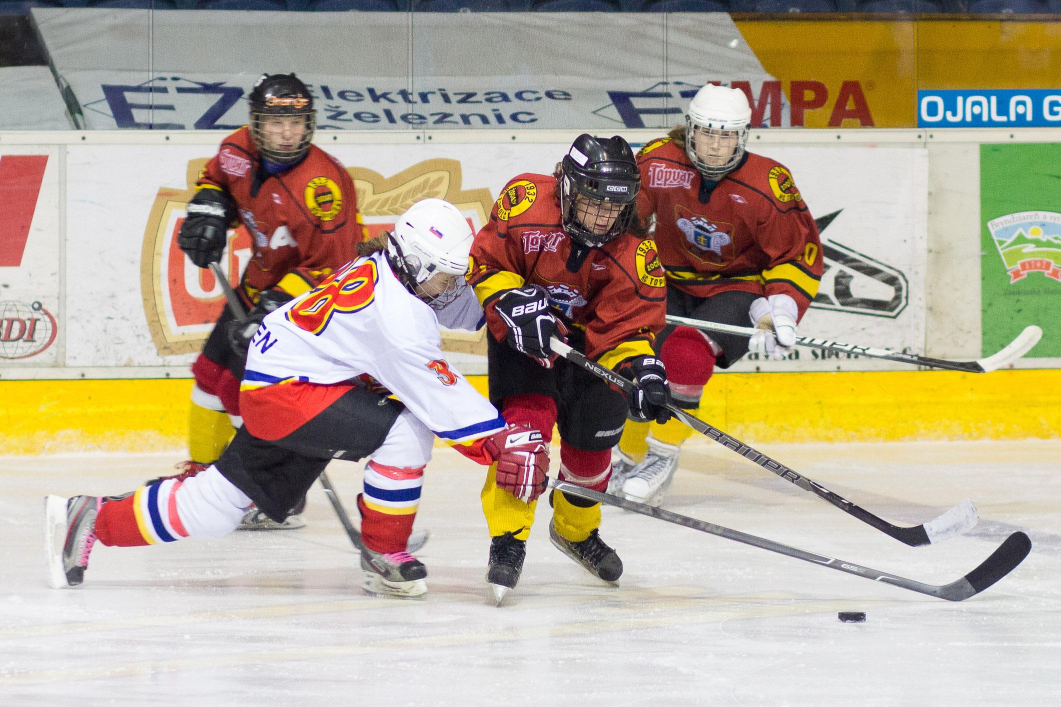 zhkm-zvolen-hc-topolcany-2013-hokej-25