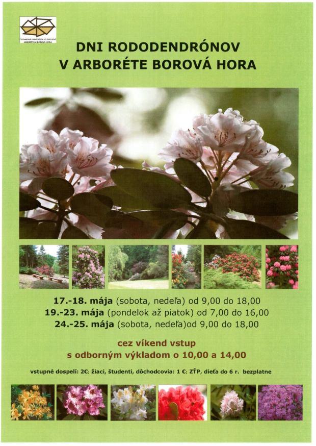 dni-rododendronov-v-arborete-borova-hora-2014