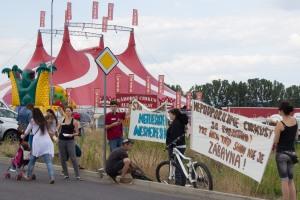 protest-cirkus-ales-zvole-3