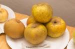 pekne zlte jablka