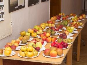 vela jablk na stole