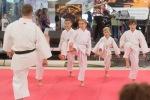 ukazka karate deti