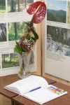kvet a kniha