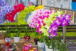 umele pestrofarebne kvety