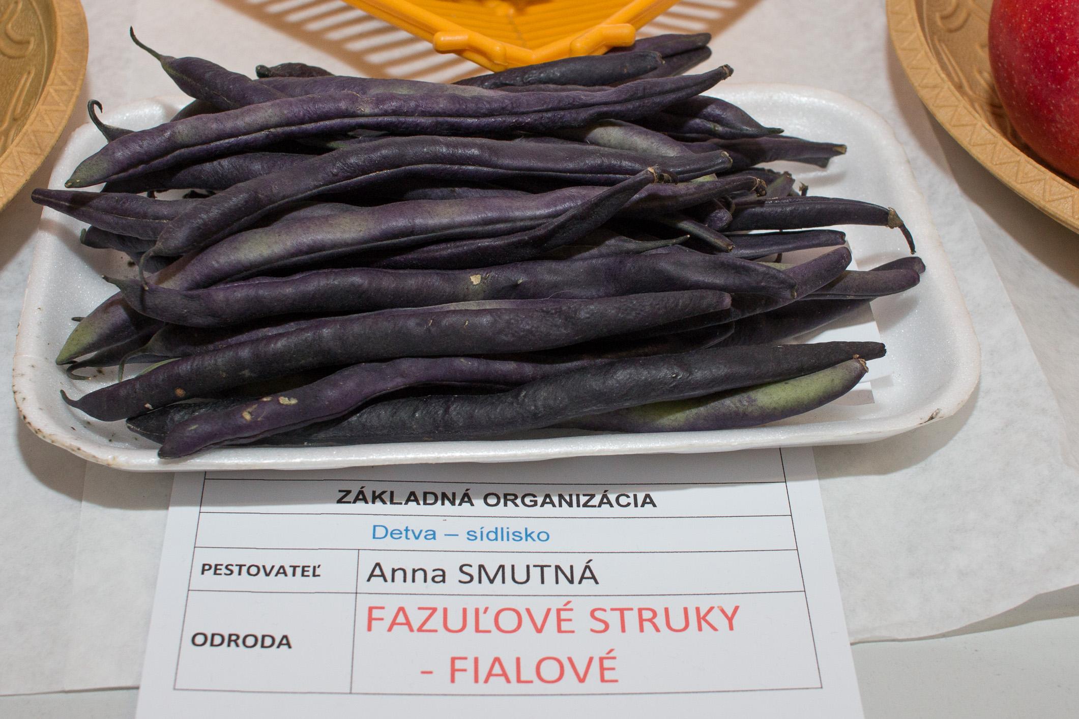 Fazuľové struky –fialová