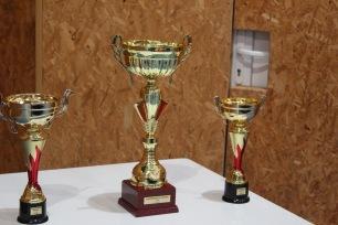 majstrovstva-oblasti-2016-stolny-tenis-37