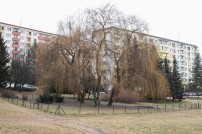 vencovisko-zlaty-potok-1