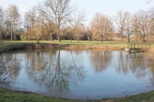 jazierko-arboretum-zvolen