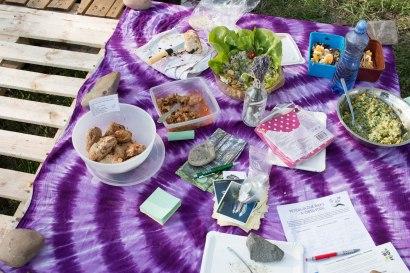 vegansky-piknik-lanice-3