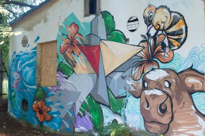 grafity-borova-hora