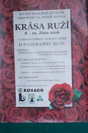 krasa-ruzi-2016-zvolen-14