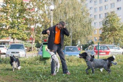 psia-zoznamka-na-zapade-13