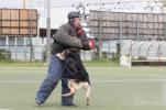 ukazka-policajneho-psa-1