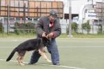 ukazka-policajneho-psa-2