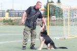 ukazka-policajneho-psa-3