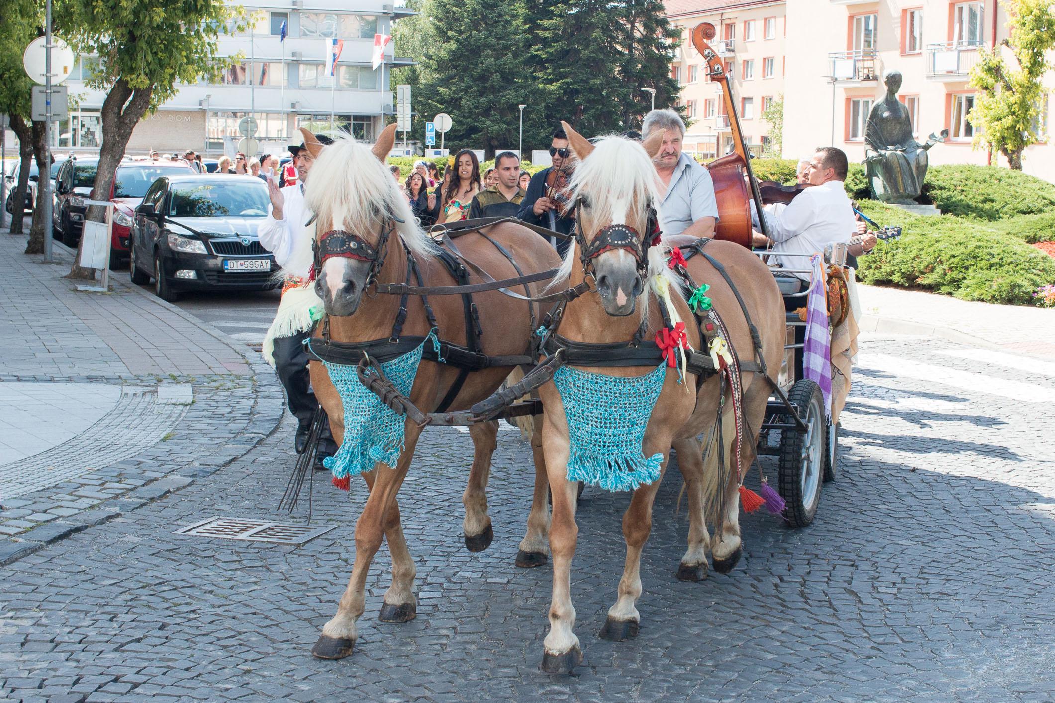 romska-kultura-zv-105