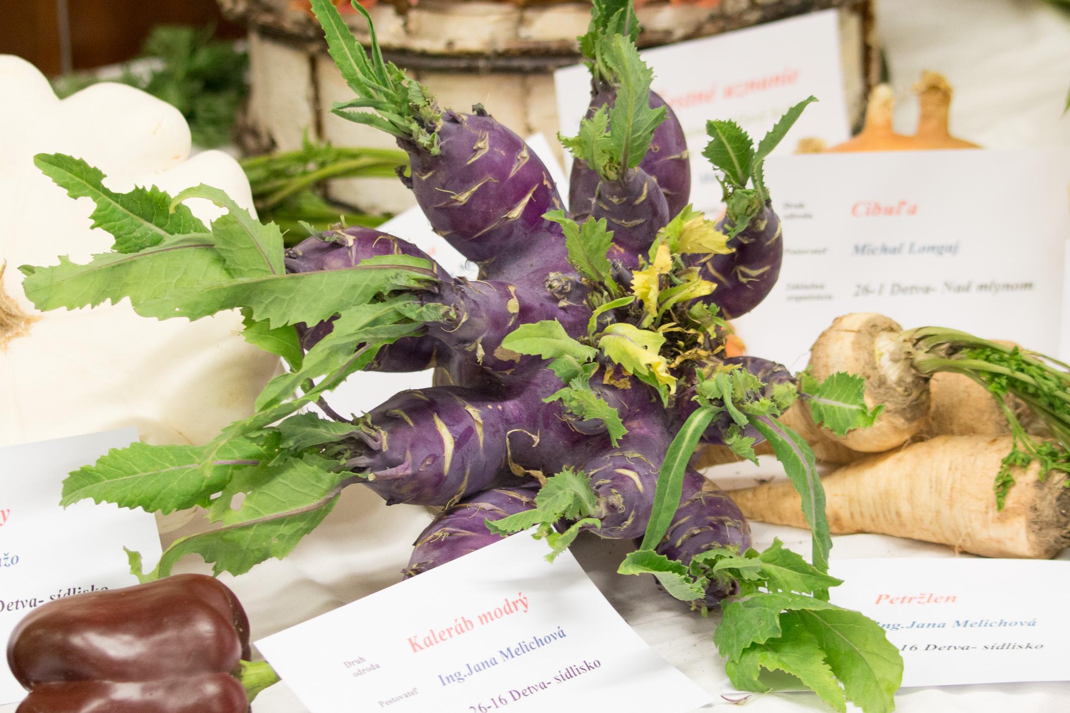 ovocie-zelenina-zv-1000