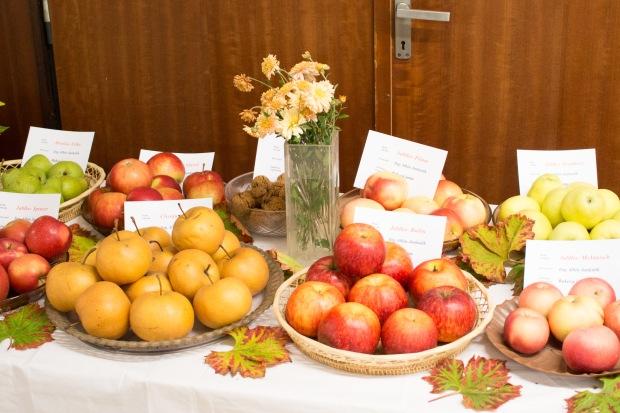 pestrofarebné ovocie na stole