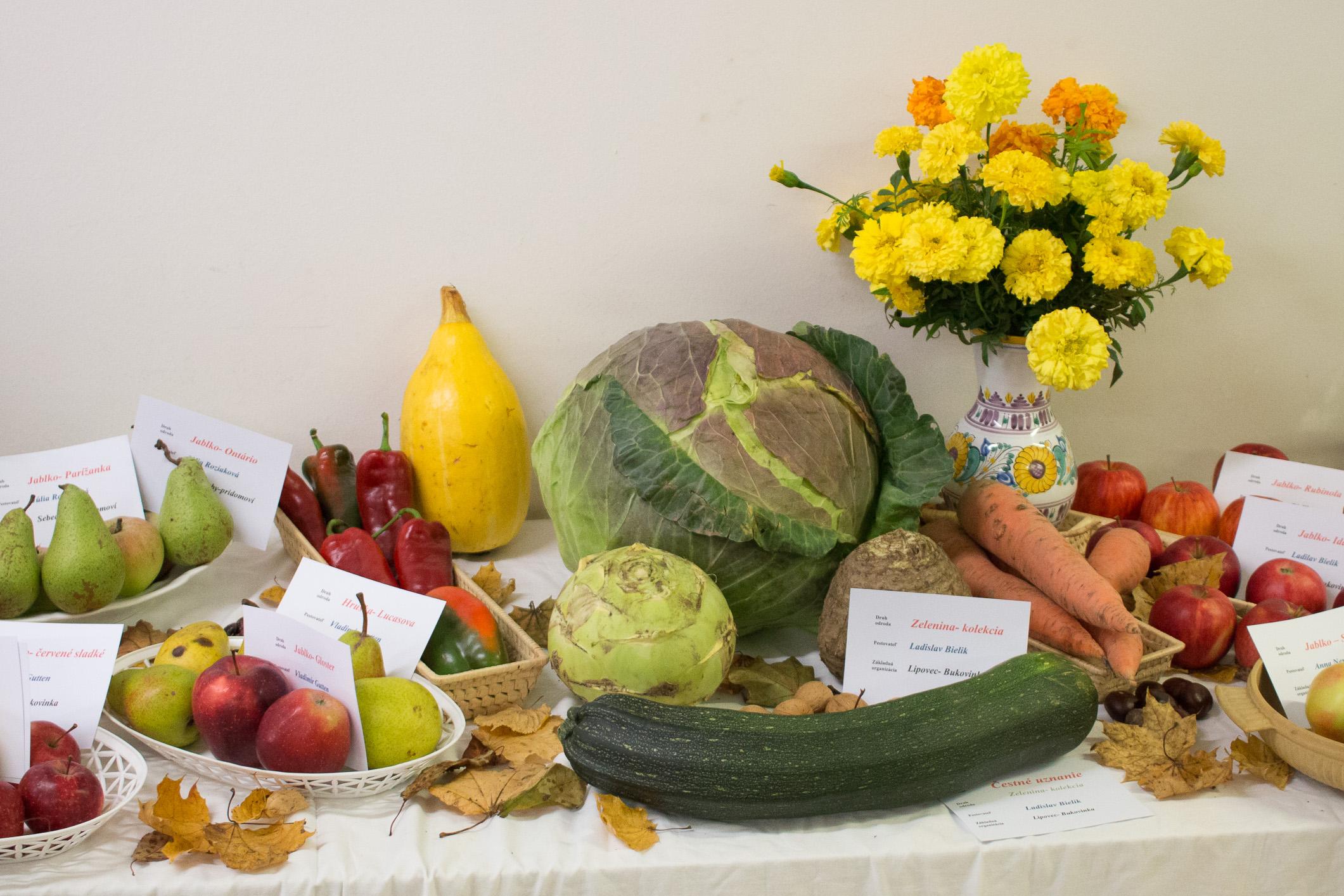 ovocie-zelenina-zv-1018