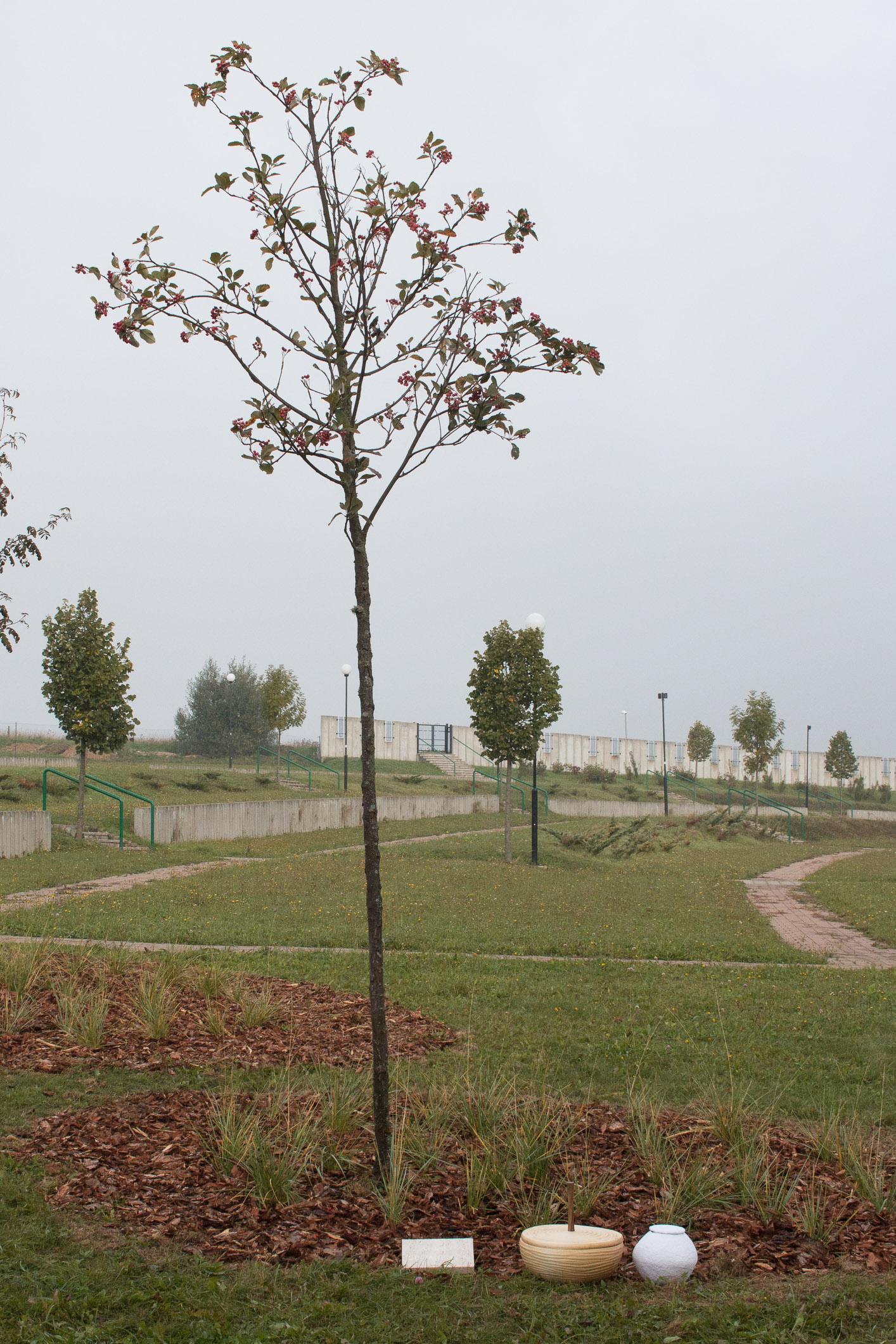 zahrada-spomienok-zv-1005