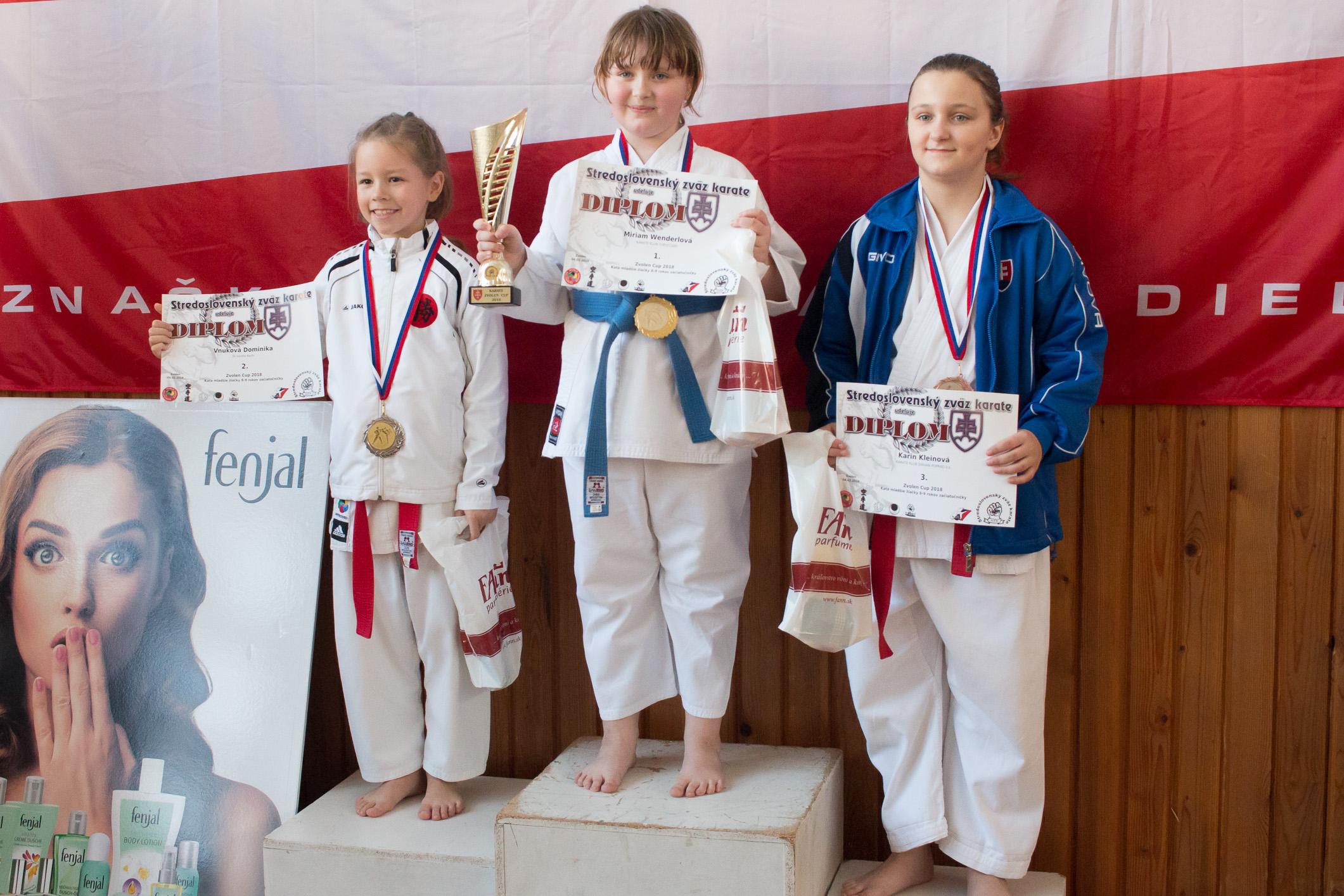 karate-zv-cup-18