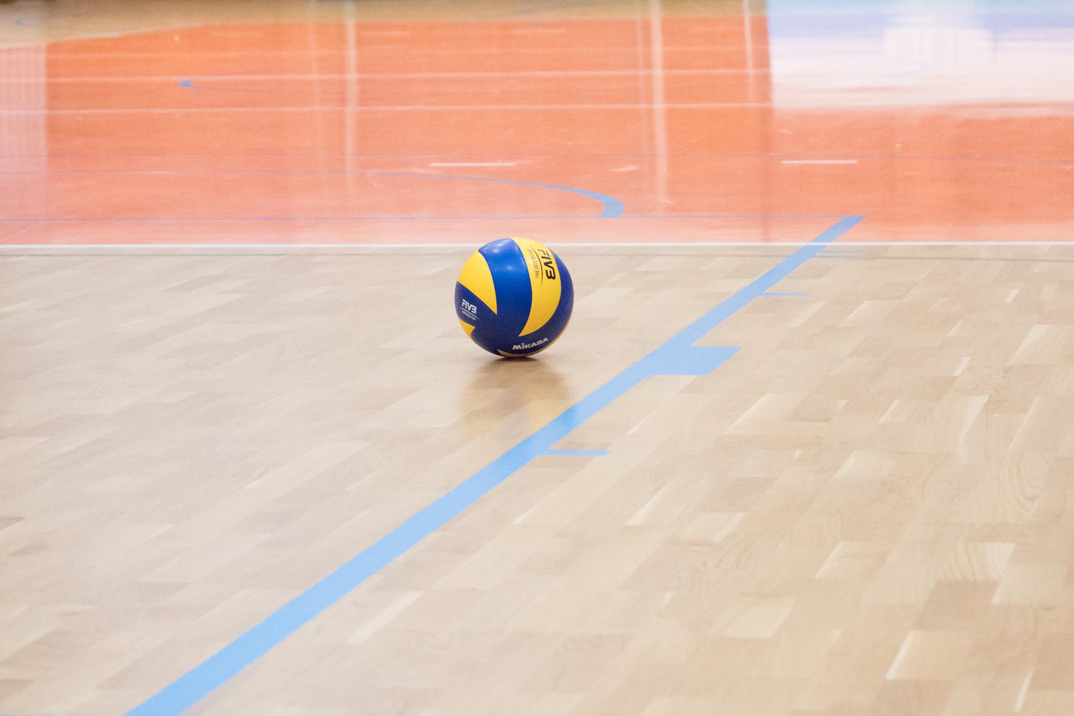 Volejbalová lopta