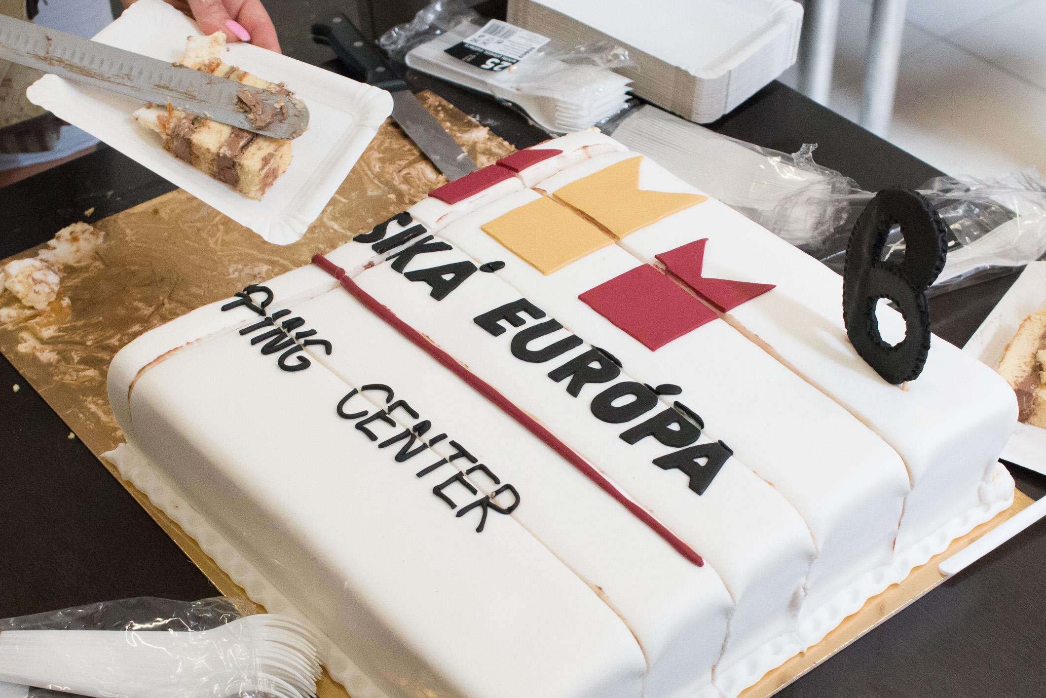 europa-zv-torta-10