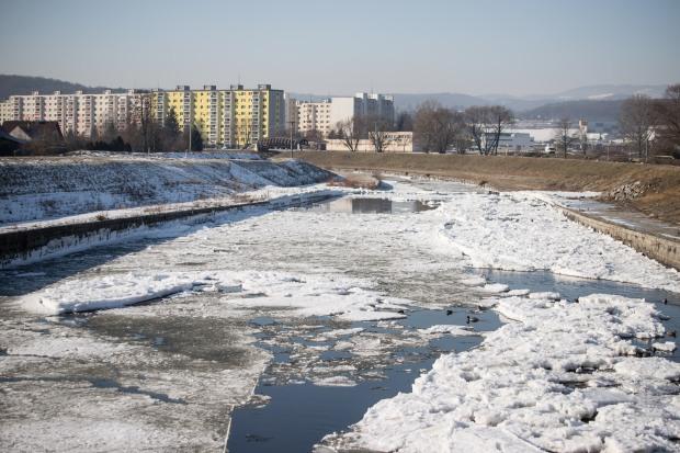 zima-zv-januar-2019.jpg