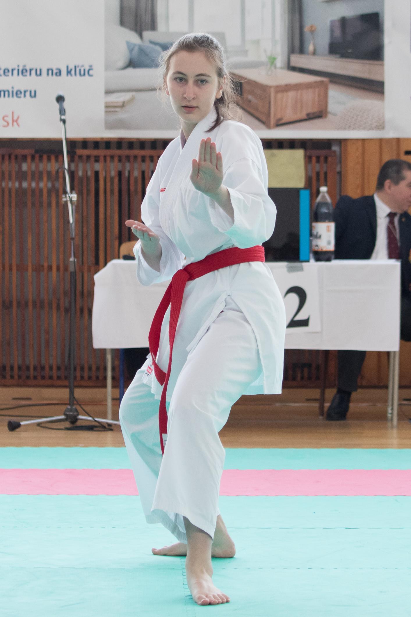 karate-zv-cup-102