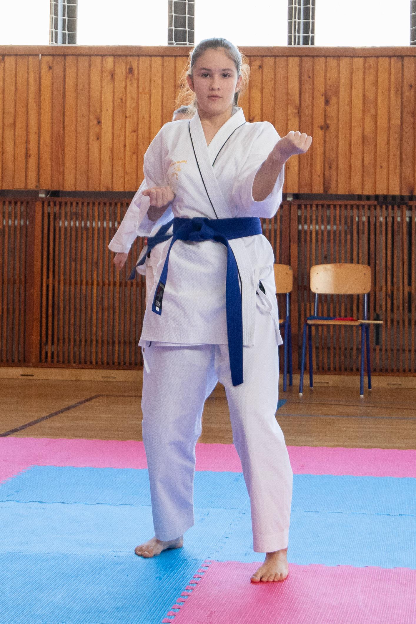 karate-zv-cup-202